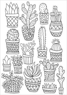 Cactus Little Pots Coloring Page Find This Pin And More