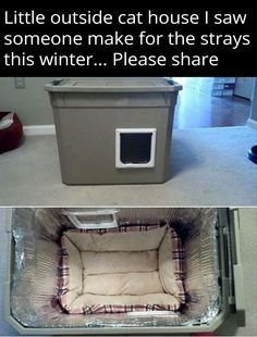 For homeless animals...