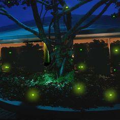 garden lights pinterest - Cerca con Google