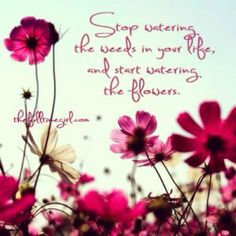 Water your flowers! #flowers #projectinspired #quote