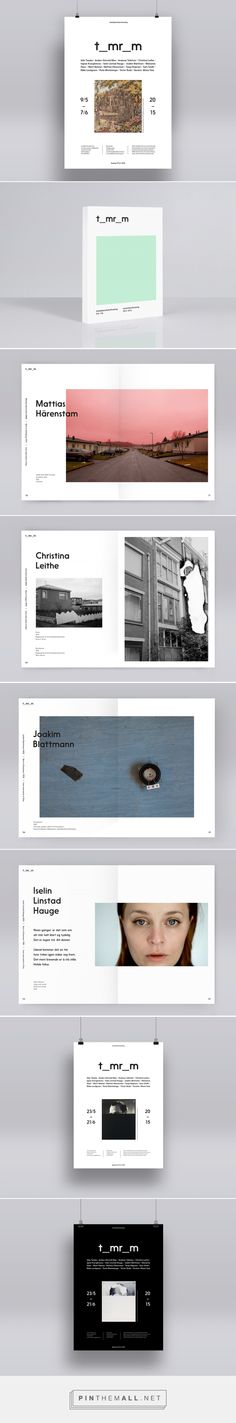 Tomrom on Behance - created via http://pinthemall.net