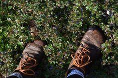 Na túto burinu sa nehnevajte, radšej ju ochutnajte - Záhrada.sk Hiking Boots, Shoes, Zapatos, Shoes Outlet, Shoe, Footwear