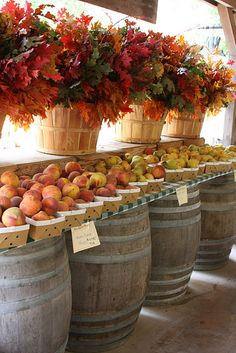 The display is very inviting...several elements worth remembering: beautiful color; barrels; baskets and abundance of peaches...