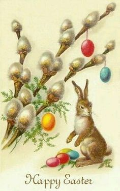 108 best holiday greetings images on pinterest vintage easter easter card with pussy willow m4hsunfo