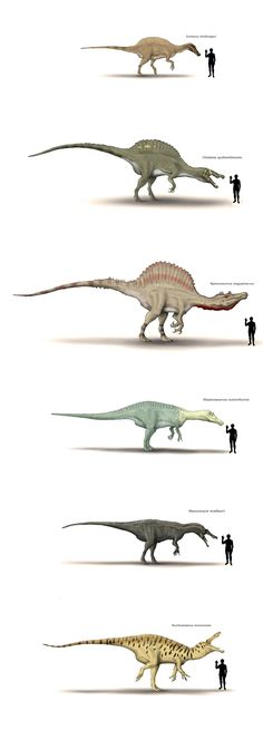 "Dinosaur/Human size chart by Hyrotrioskjan (i love the way the dude is all like ""hey there, dinosaur!"")"