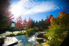 Whistler village during the Fall season is a great time to visit for a vacation experience in the Pacific Coast mountains of beautiful BC, Canada. Photo by: Chad Chomlack Local Photographers, Fall Family, Whistler, Pacific Coast, British Columbia, Tourism, Canada, Explore, Vacation