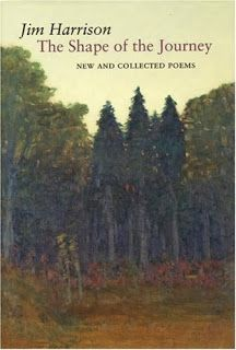 "Kurious Kitty's Kurio Kabinet: Poetry Friday--""Lullaby for a Daughter"" (Poetry collection)"