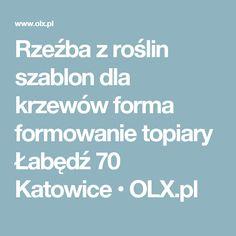 Rzeźba z roślin szablon dla krzewów forma formowanie topiary Łabędź 70 Katowice  • OLX.pl