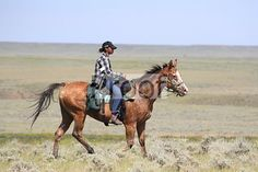 Photo from Chief Joseph Appaloosa Trail Ride! collection by PBJM Session Photos