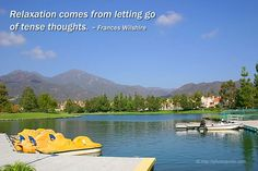 relaxation | Relaxation comes from letting go of tense thoughts. ~ Frances Wilshire