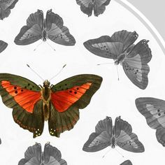 Butterfly Print Grey Orange 105 by 15 inches by TheCuratorsPrints,