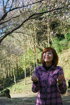 2012.02.04 -Taoyuan County桃源仙谷