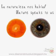 """La Zanahoria y nuestro ojo – @diseandotusalud  """"La Naturaleza nos habla"""": La Zanahoria y nuestro ojo…  Una rebanadita de zanahoria es similar al ojo humano."""