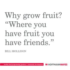 Bill Mollison, Garden Quotes, Favorite Quotes, Inspirational Quotes, Wisdom, Healthy Recipes, Food, Health Recipes, Meal
