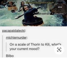 Hobbit Funny, O Hobbit, Midle Earth, Fili Und Kili, Geeks, Funny Memes, Hilarious, Nerd Funny, Jrr Tolkien