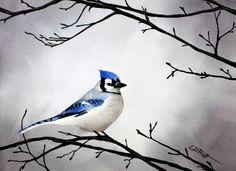 "Bluejay bird watercolor painting by Lynn D. Pratt ""Winter Blues"" $290"