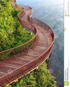 lakeside-nature-walk-way-photograph-showing-beautiful-curving-wooden-board-walkway-tropical-park-natural-style-34127577.jpg (1035×1300)