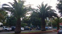 Avenida Brasil en Santiago de Chile, Metropolitana de Santiago de Chile
