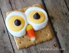 Google Image Result for http://g-cdn.apartmenttherapy.com/2977494/Owl-Smores-Living-Locurto_rect540.jpg