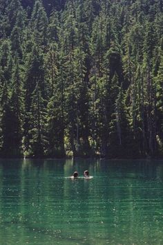 Swimming in a lake/dam, being in nature. Vie Simple, Seen, Swimming Holes, Adventure Is Out There, Plein Air, The Great Outdoors, Summer Vibes, Summer Sunset, Wilderness