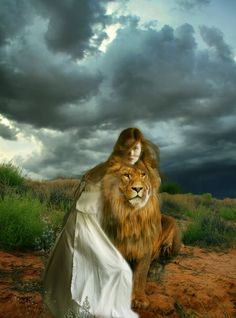 The Lion of Judah rules forever Lion And Lamb, Tribe Of Judah, Bride Of Christ, King Jesus, Prophetic Art, Lion Of Judah, Lion Art, Daughters Of The King, Prayer Warrior