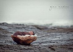 Baby in a Nut Shell. Photograph by Gina Maxine.