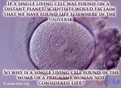 If a single living cell was found on a distant planet, scientists would exclaim that we have found life elsewhere in the universe.    So why is a single living cell found in the womb of a pregnant woman not considered life?
