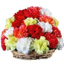 Love Paradise is a basket of beautiful mixed carnations.
