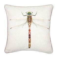 Insectos Cushion | ZARA HOME United Kingdom