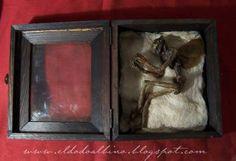 Propnomicon, mummified fairy