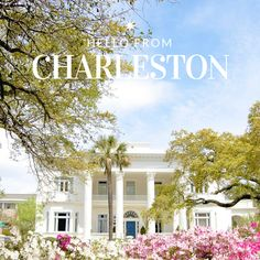 Hello from Charleston! For my last day living here, I reflected on the 9 reasons Charleston is one of the best cities in the country #ontheblog {linkinprofile}! #charleston #explorecharleston #travel #travelblog #traveldeeper #bestcity #beautifuldestinations