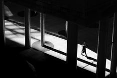 Монохромные тени на улицах Токио — Хирохару Мацумото