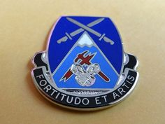 US Army Special Troops Battalion 10th Mountain 3rd Brigade Unit Crest, DI, DUI