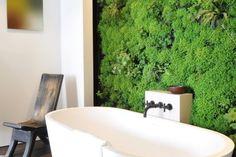 Hasznos tippek függőleges kert kialakításához | Életszépítők#.VYcfXE3GNHg