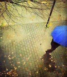 Rainy Day by Visualtricks on Flickr.