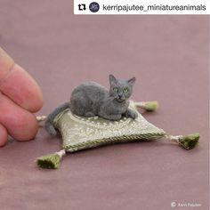So few people make good miniature cats. I've noticed that often people who make wonderful miniature dogs don't have the same success with cats. But this is a wonderful miniature cat. . . @peppercorn_cottage you said Kerri Pajutee never made a Russian Blue but here's one and it's perfect! . . #minicat #miniaturecat #minienthusiast . . #Repost @kerripajutee_miniatureanimals with @get_repost Dollhouse miniature Russian blue cat sculpture of polymer clay & fiber. Silk pillow by Raffaelle Tiozzo…