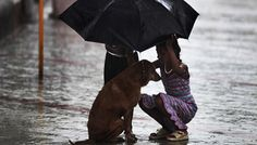 14 Pictures From India That Will Restore Your Faith In Humanity