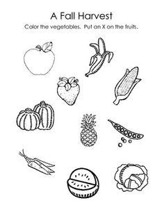 Harvest Time Fruit and Vegetable Sorting Worksheet