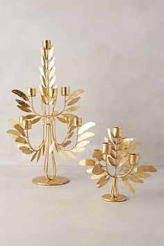 beautiful gold plumage candelabra #anthrofave http://rstyle.me/n/tbiewr9te