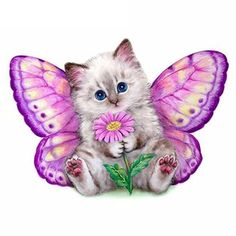 AZQSD Diamond Painting Cross Stitch Cute Cat Butterfly Full Round Diamond Embroidery DIY Needlework Home Decoration Animals And Pets, Baby Animals, Cute Animals, Cute Kittens, Cats And Kittens, I Love Cats, Cat Art, Cute Pictures, Dog Cat