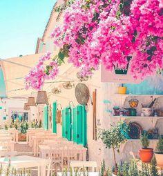 ALACATI STREET&ALAÇATI SOKAĞI&ÇARŞI  / ALAÇATI CESME IZMIR TURKEY Travel Set, Travel Tips, Asia, Alacati Turkey, Visit Turkey, Turkey Travel, Bodrum, Izmir, Travelling