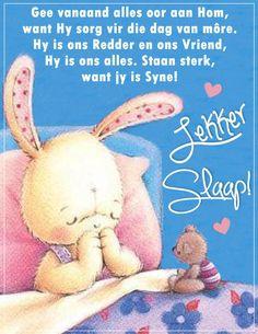 Afrikaanse Quotes, Goeie Nag, Good Night, Amanda, Teddy Bear, Words, Heart, Nighty Night, Teddy Bears