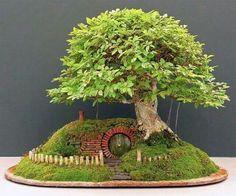 # FAERIE HOUSE W/ BONSAI TREE