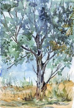 Sketching in Nature- great tree. Terrific use of negative space here