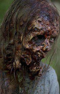 Walker 54