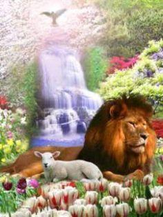 lion lamb  dove waterfall