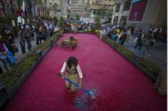 Ocean Spray NYC Rockefeller Plaza Cranberry Bog