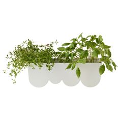 Clay pots have nothing on this chic Aggplanta Planter.  $5, ikea.com   - GoodHousekeeping.com