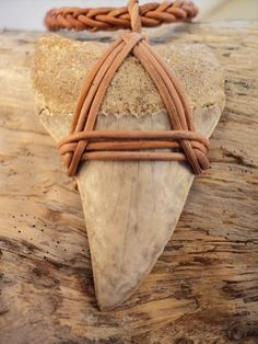 I had to use a lot of leather to contain this bad boy.  A Mako shark tooth necklace on a hand braided leather cord.  You've never seen anything like this...unique and exclusive to RocknWow.