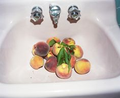 Peaches, by Ryan Hancock. The work of Ryan Hancock finds mysticism in the juxtaposition of everyday objects, creating cryptic narr. Peach Tumblr, Rhyme And Reason, Gifts For Photographers, Fruit Art, Art Challenge, Aesthetic Photo, Cool Eyes, In This Moment, Image